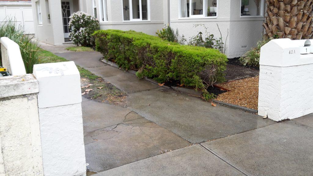 Mitford St landscaping